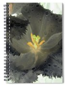 Spring Tulips - Photopower 3106 Spiral Notebook