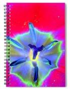 Spring Tulips - Photopower 3167 Spiral Notebook