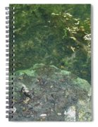 Spring Water At The Grotto Spiral Notebook