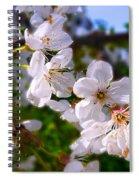 Spring White Spiral Notebook