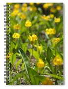 Spring Wildflowers Spiral Notebook
