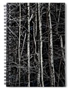 Spring Woods Simulated Woodcut Spiral Notebook