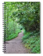 Springing Down The Path Spiral Notebook