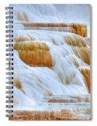 Springs Alive Spiral Notebook
