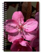 Springs Bloom Spiral Notebook