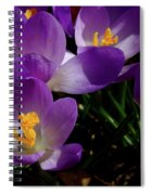 Springs First Flowers Spiral Notebook
