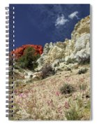 Springtime At Red Rock Canyon Spiral Notebook