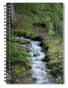 Springtime Creek Spiral Notebook