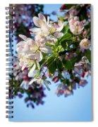Springtime In Bloom Spiral Notebook