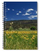 Springtime In Hat Creek Spiral Notebook