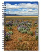 Springtime In Honey Lake Valley Spiral Notebook