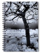 Springtime In Infrared Spiral Notebook