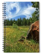 Springtime In Lassen County Spiral Notebook