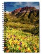 Springtime In The Desert Southwest Spiral Notebook