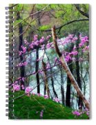 Springtime In The Mountains 2 Spiral Notebook