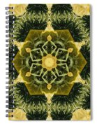 Springtime  Mandala Spiral Notebook