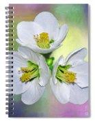 Springtime Triplets By Kaye Menner Spiral Notebook