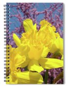 Springtime Yellow Daffodils Art Print Pink Blossoms Blue Sky Baslee Troutman Spiral Notebook