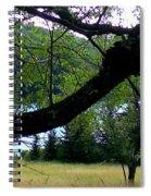 Spruce Knob Silhouette Spiral Notebook