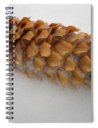Spruce Tree Cone In The Snow Spiral Notebook