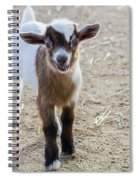 Spunky Spiral Notebook