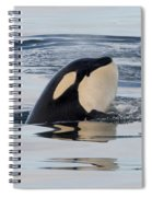 Spyhop Spray Spiral Notebook