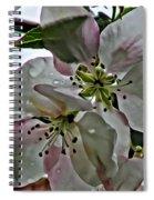 Square Dogwood Spiral Notebook