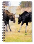 Squaring Off Spiral Notebook