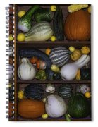 Squash And Gourds In Compartments Spiral Notebook