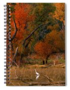 Squaw Creek Egrets Spiral Notebook