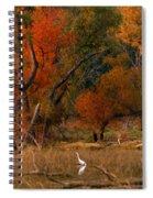 Squaw Creek Egrets Spiral Notebook