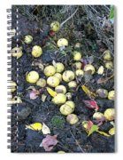 Squirrel Cache In Compost Pile Spiral Notebook