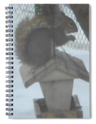 Squirrel Chilling Out Spiral Notebook