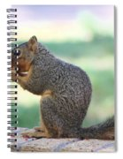 Squirrel Eating Crab Apple Spiral Notebook