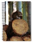 Squirrel Eating Pinecones Spiral Notebook