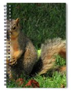 Squirrel Eating Pizza Spiral Notebook
