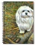 Squirrel In Its Mind Spiral Notebook