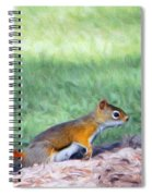 Squirrel In The Park Spiral Notebook