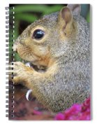 Squirrel - Morning Snack 02 Spiral Notebook