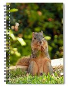 Squirrel On A Log Spiral Notebook