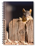 Squirrel On The Fence Spiral Notebook