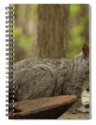 Squirrel With Anchor Spiral Notebook