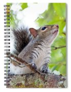 Squirrel With Personality Spiral Notebook