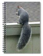 Squirrelart #2 Spiral Notebook
