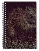 Squirrely Art Spiral Notebook