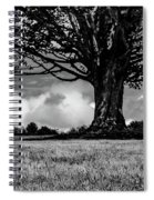 St. Benedict Abbey Single Tree In Summer Spiral Notebook