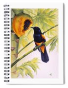 St. Lucia Oriole And Papaya Spiral Notebook