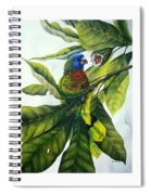 St. Lucia Parrot And Fruit Spiral Notebook