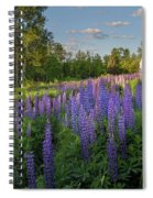 St Matthews Sunrise Spiral Notebook