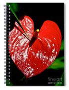 A Point To Your Heart Spiral Notebook